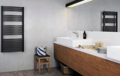 Интерьер ванной комнаты с полотенцесушителем Terma Dexter